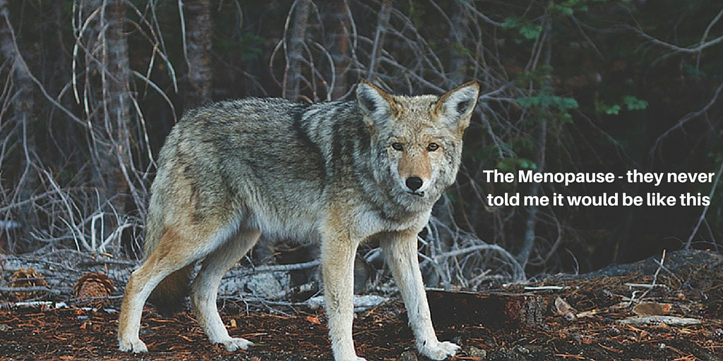 The menopause, they never told me it would be like this - a female wolf